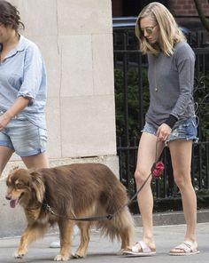 Amanda Seyfried Claims Her Dog Finn Is Her Soulmate as She Takes Him Around New York in Birkenstocks