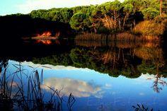 Pela mata um lindo lago