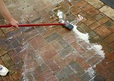 There Is An Easy And Safe Way To Clean Your Outdoor Pavers. A Natural  Cleaning