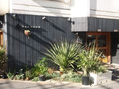Tas Yard #cafe - Shibuya, #Tokyo  東京都渋谷区千駄ヶ谷3-3-14 Tokyo Restaurant, Tokyo Hotels, Dry Garden, Modern Industrial, Garden Styles, Plant Decor, Indoor Plants, Shrubs, My House