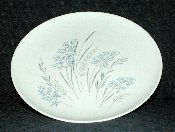 Syracuse China Carefree Collection Blue Grass Salad Plates