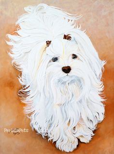 CUSTOM PET PORTRAIT 12 x 16 painted on canvas from by PerlillaPets, $195.00