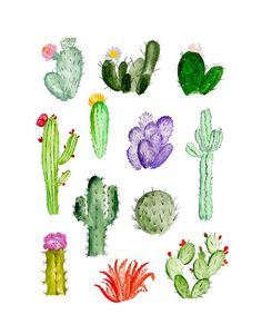 Find the desired and make your own gallery using pin. Drawn cactus sketch - pin to your gallery. Explore what was found for the drawn cactus sketch Painting Inspiration, Art Inspo, Cacti And Succulents, Cactus Plants, Indoor Cactus, Succulent Planters, Succulent Arrangements, Hanging Planters, Succulents Garden