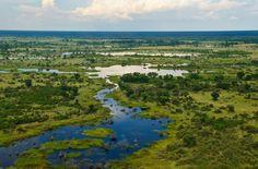 Visit the Okavango Delta