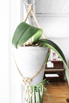 Hanging Planter Pots