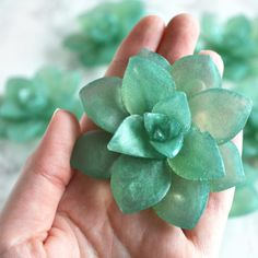 Succulent Soap by Tailored Soap, unique soaps for favors for a greenery wedding
