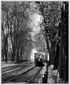 tram in warsaw.