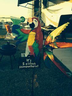 It's always 5 o'clock at Pensacola Beach RV Resort! Pensacola Beach, Oclock, Rv, Motorhome, Caravan Van