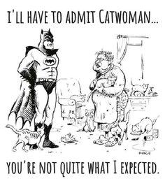 I'll Have To Admit Catwoman - Humour Hub Funny Shit, Haha Funny, Funny Jokes, Hilarious, Funny Stuff, Cat Jokes, Nerd Jokes, Funny Laugh, Crazy Cat Lady