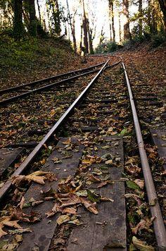 Mystic Railway  #trains #railway