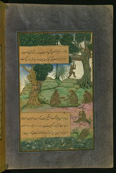 Animals of Hindustan monkeys called bandar that can be taught to do tricks, from Illuminated manuscript Baburnama (Memoirs of Babur), Walters Art Museum Ms. W.596, fol.