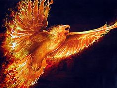 Phoenix: Ancient Egyptian myth w/ a close relation to fire. As well as being born from fire, the phoenix chooses to end its yr lifespan in the same fashion. Born/ending in fire. And from it's ashes a young phoenix rises Mythical Creatures List, Mythological Creatures, Fantasy Creatures, Mythical Bird, Phoenix Wallpaper, Bird Wallpaper, Gold Eagle Wallpaper, Computer Wallpaper, Phoenix Artwork