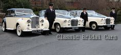 Selection of cream and black wedding cars from www.Classicbridalcars.net of Wirral including stunning 1948 Bentley MkVI, Daimler DS420 limousine and DS420 convertible wedding cars