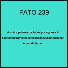 a maior palavra da língua portuguesa