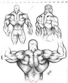 27 Ideas drawing body anatomy study for 2019 Human Anatomy Drawing, Human Figure Drawing, Figure Drawing Reference, Body Drawing, Art Reference Poses, Drawing Muscles, How To Draw Muscles, Anatomy Sketches, Body Sketches