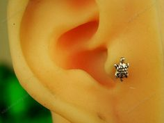 sterling silver tiny turtle tragus earring tragus stud by sayukeko