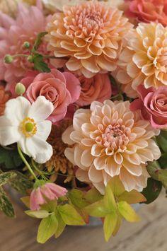 Flowers Nature, Green Flowers, Beautiful Flowers, Ikebana, Flower Phone Wallpaper, Flower Names, Beautiful Flower Arrangements, Dahlia Flower, Flower Aesthetic
