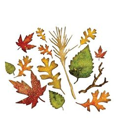 Sizzix Fall Foliage Thinlits Die Set | zulily