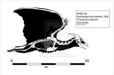 Radon (Rodan) Skeleton by Franz-Josef73.deviantart.com on @DeviantArt
