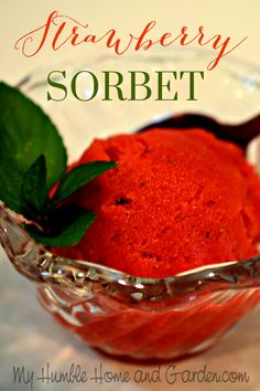 How To Make Delicious Sorbet Quickly and Easily. Click through for how to make your own sorbet! Homemade Desserts, Mini Desserts, Frozen Desserts, Just Desserts, Curry Recipes, My Recipes, Homemade Sorbet, Fruit Sorbet, Beautiful Desserts