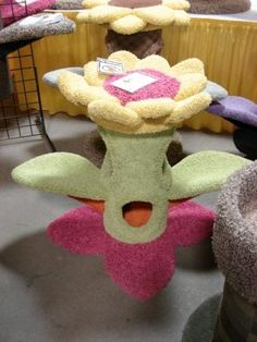Pretty Flower! Cool Cat Trees, Cool Cats, Cat Info, Pet Furniture, Great Lakes, Pretty Flowers, Cool Stuff, Pets, Animals