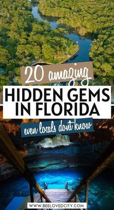 Florida Vacation Spots, Florida Travel Guide, Visit Florida, Best Places In Florida, Vacation Places In Usa, Florida Trips, Florida Keys, Beautiful Places To Travel, Best Places To Travel