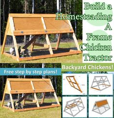 This incredible step by step tutorial of how to build a homesteading A frame chicken tractor is a great weekend project your chickens overall health will Backyard Farming, Chickens Backyard, Chicken Enclosure, Chicken Tractors, Chicken Coops, Sustainable Farming, Farms Living, Diy House Projects, Homestead Survival