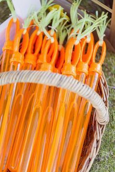 Carrot Bubble Wands from a Peter Rabbit Birthday Party via Kara's Party Idea. - Carrot Bubble Wands from a Peter Rabbit Birthday Party via Kara's Party Ideas Peter Rabbit Party, Peter Rabbit Birthday, Peter Rabbit Movie, Peter Rabbit Cake, Easter Birthday Party, Farm Birthday, 1st Birthday Parties, Birthday Basket, Spring Birthday Party Ideas
