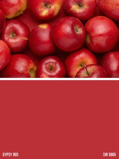 Sherwin-Williams paint color – Gypsy Red (SW 6865)