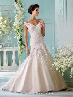 David Tutera - Sialia - 216254 - All Dressed Up, Bridal Gown