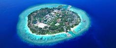 Bandos Island Resort & Spa - Maldives with toddler. Kids friendly + good home reef.