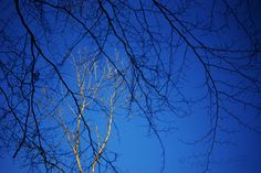 https://flic.kr/p/CcGZGo | let there be blue skies |    Thanks for looking ... Catch up soon... :-)   blog  Fine Art America on line shop website  Getty Images