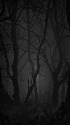 new home paint peeling Planets Wallpaper, Sad Wallpaper, Scenery Wallpaper, Black Wallpaper, Dark Weather, Dark Landscape, Dark Wings, Mystical Forest, Night Forest