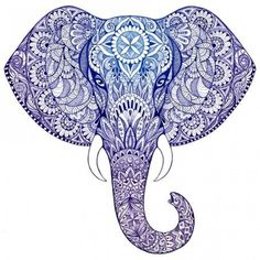 Buy 60 x 60 cm Blue Elephant Head Canvas Online for $39.95 | Love Home Decor