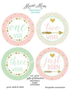 FREE GIFT SET Baby Girl Monthly Stickers Mint by MaineMomBoutique
