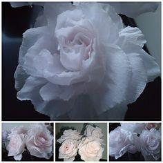 Mijn rozen van papier