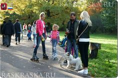 Pug and bichon. Academy Of Sciences, Dog Photos, Dog Owners, Projects For Kids, Moscow, Pugs, Photo And Video, Garden, Animals
