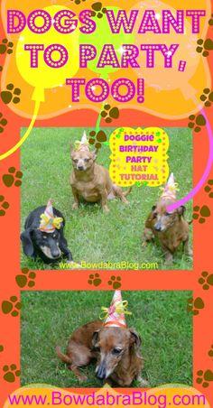 Pet Birthday Hats Tutorial