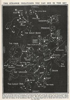 all the stars..  /strange creatures by Cardboard Antlers, via Flickr