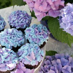 hortensien-pflege-tipps-rosa
