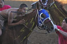 """Native American Rider ready to race at the start of the """"Sheridan WYO 2008 Indian Relay Race"""" West High School, Painted Horses, Relay Races, American Life, People Of The World, Sioux, Native Americans, American Indians, Equestrian"""