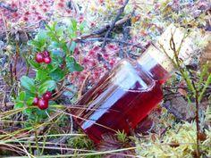 Tyttebærsesongen har såvidt startet....Det er så uendelig mye forskjellig tyttebær kan brukes til. En av mine favoritter er tyttebærsirup. Tyttebær har etter hvert blitt en bærsort som jeg bruker s...
