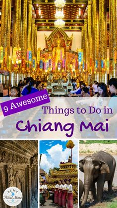 Heading to Chiang Mai, Thailand? Here are 9 suggestions of awesome things to do to make your time there amazing and memorable.
