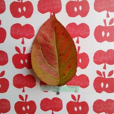 Mais oui des pommes et un pommier!! #flowleaf2015 #10octobre #flowweekly05 Oui Oui, Plant Leaves, Instagram Posts, Plants, October 10, Apple Tree, Leaves, Fall, Plant