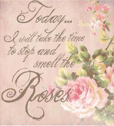 'Smell The Roses'...