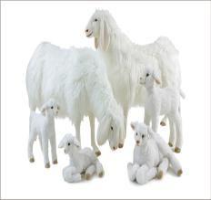 Luxury Lifesize, Life-like and Realistic Large Plush Stuffed Animals Giant Stuffed Animals, Teddy Bears, Plushies, Sheep, Lion Sculpture, Cute Animals, Toy, Statue, Crafts