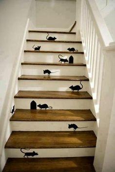 E os gatos piram!