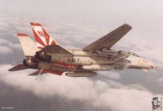 F-14 Tomcat (VF-111 Sundowners)