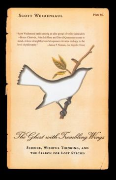 The Ghost with Trembling Wings: Science, Wishful Thinking... https://www.amazon.co.uk/dp/0865476683/ref=cm_sw_r_pi_dp_x_BaKZzb7W8PR96