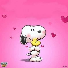 Snoopy - Kermit the Frog Memes Snoopy Love, Snoopy E Woodstock, Charlie Brown Und Snoopy, Snoopy Comics, Snoopy Valentine, Valentines Day Drawing, Snoopy Pictures, Snoopy Wallpaper, Cute Beagles